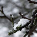 ein 12tel Blick: Der Harkortsee im Januar 2015